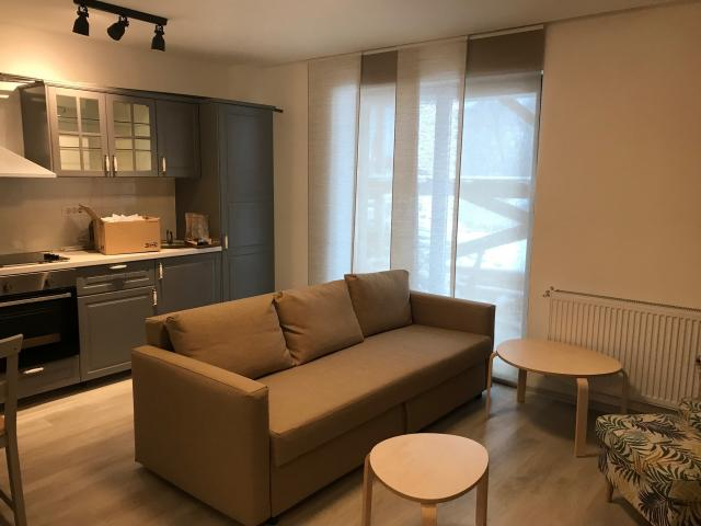 apartament Busteni - Central